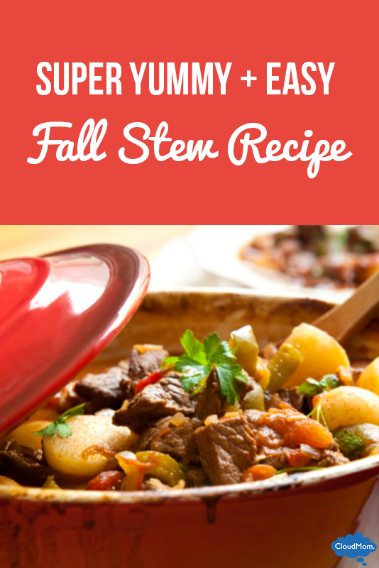 Fake Supermom Recipe #1: Fall Stew