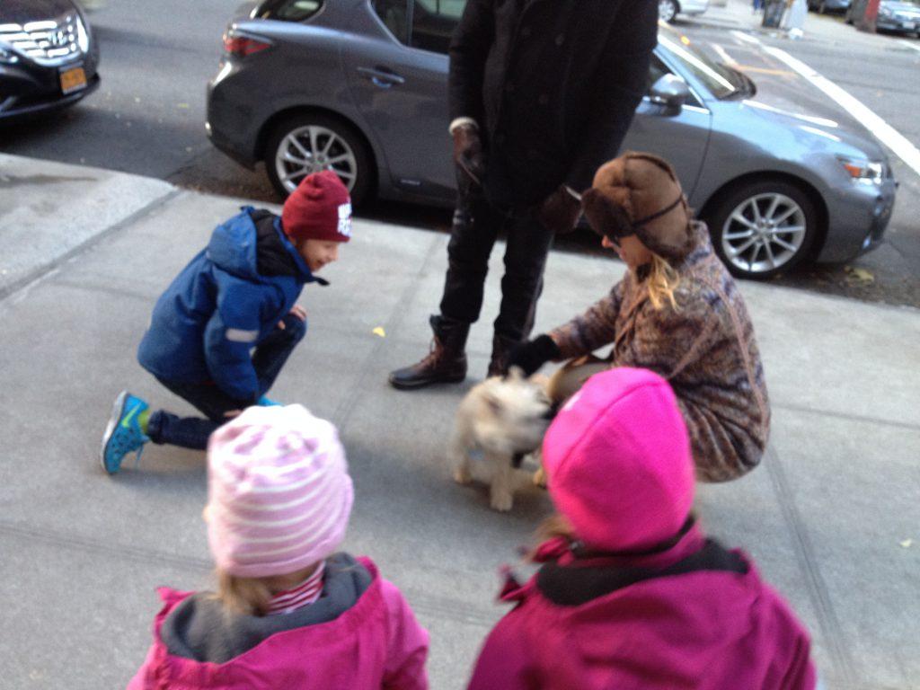 petting a dog