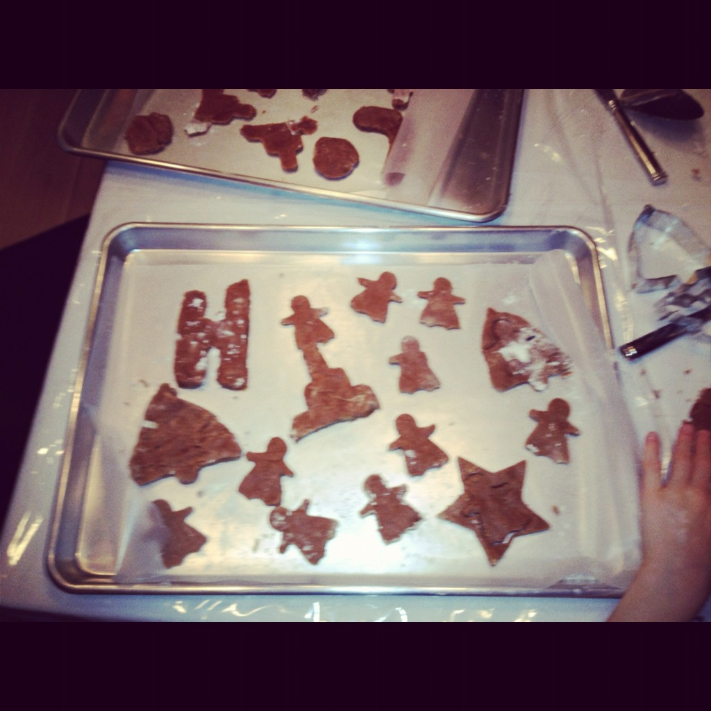 Gingerbread Cookies ready for Baking