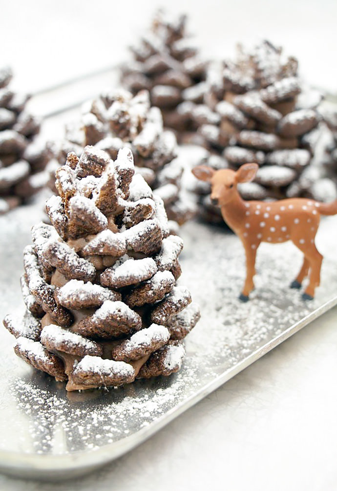 3-chocolate-pinecone-recipe-2