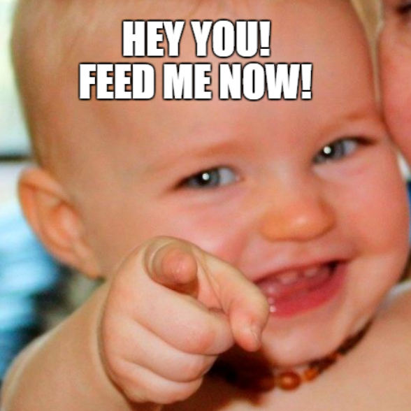 Hey you! Feed me NOW!