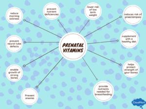Diagram displaying importance of prenatal vitamins
