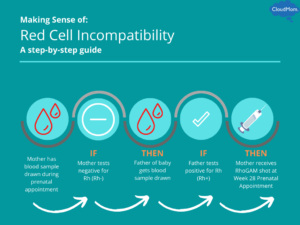 Steps Explaining Red Cell Incompatibility