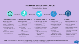 the 5 Stages of labor