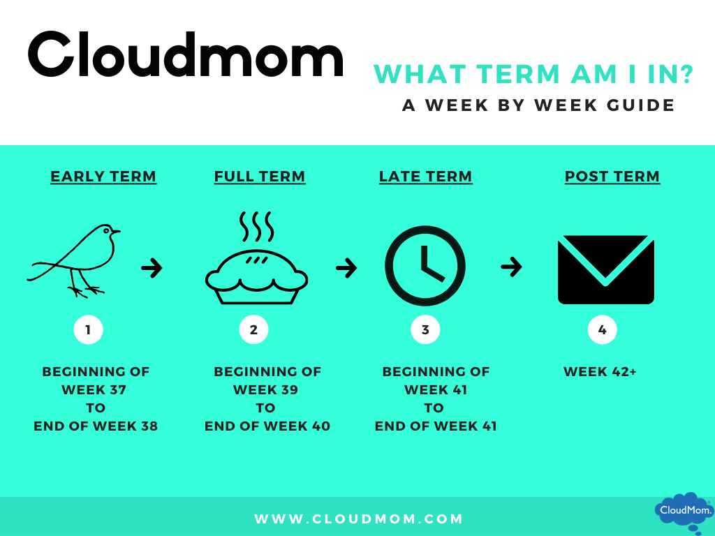 a guide to pregnancy terms: early term, full term, late term, and post term