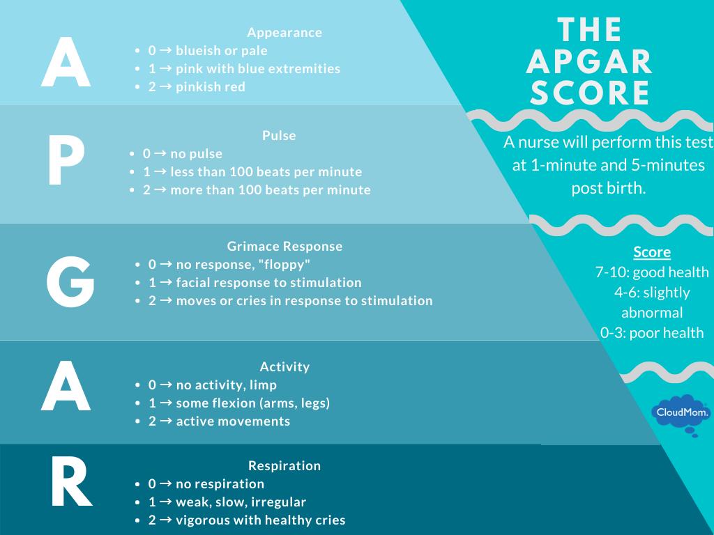 APGAR score breakdown and guidelines